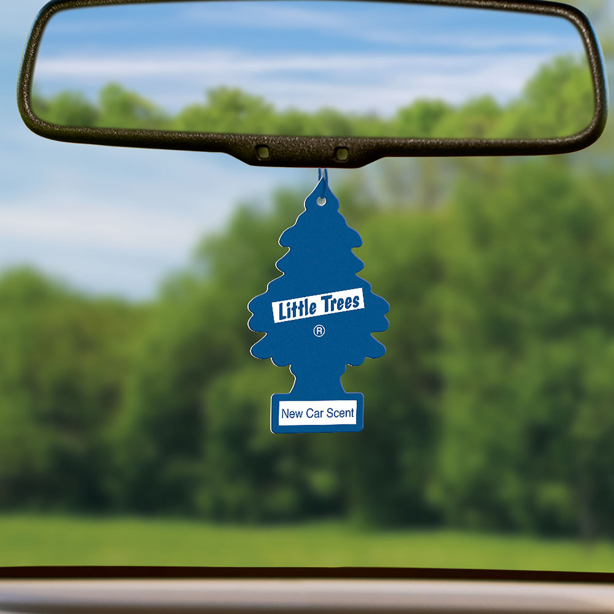 """little trees air freshener in """"new car scent"""" with actual trees in the background"""
