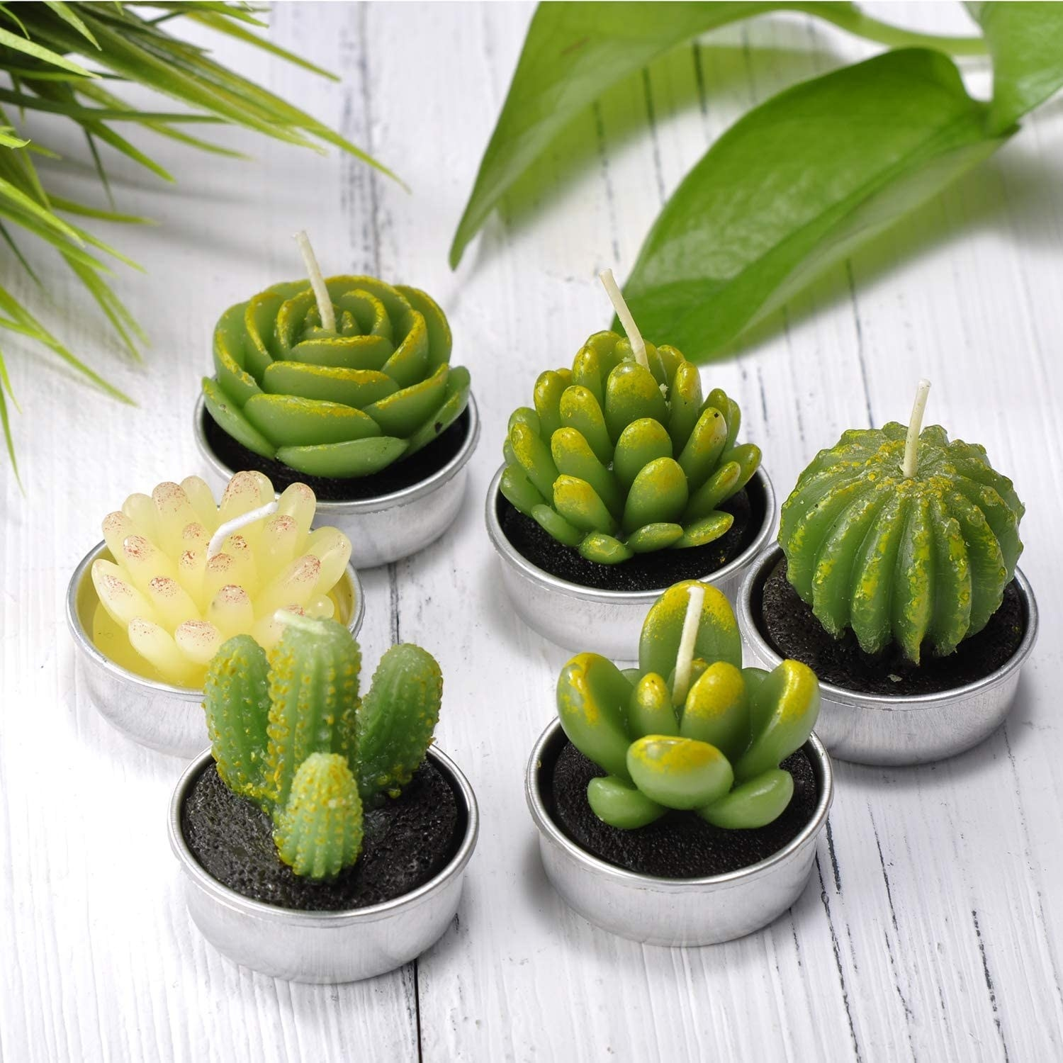 six candles that look like succulents