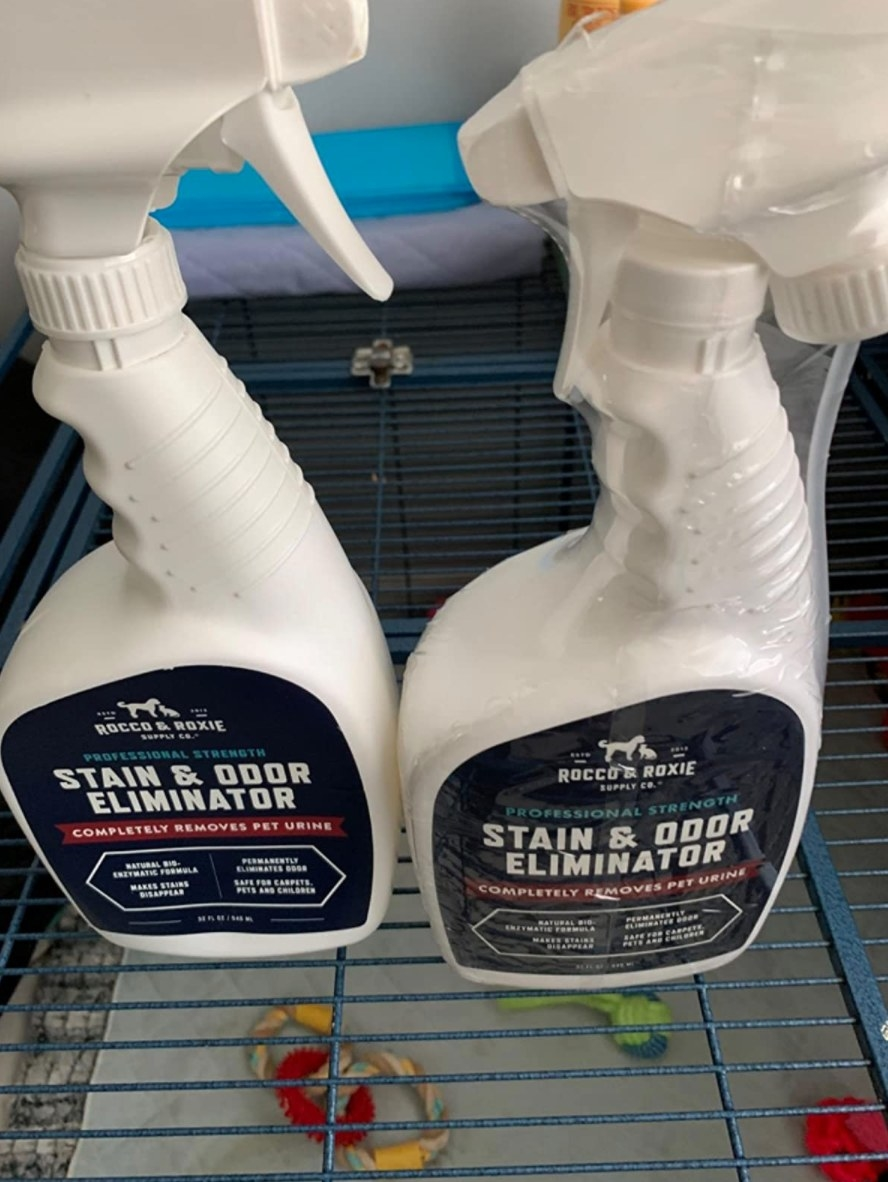 The stain and odor eliminator in a white spray bottle