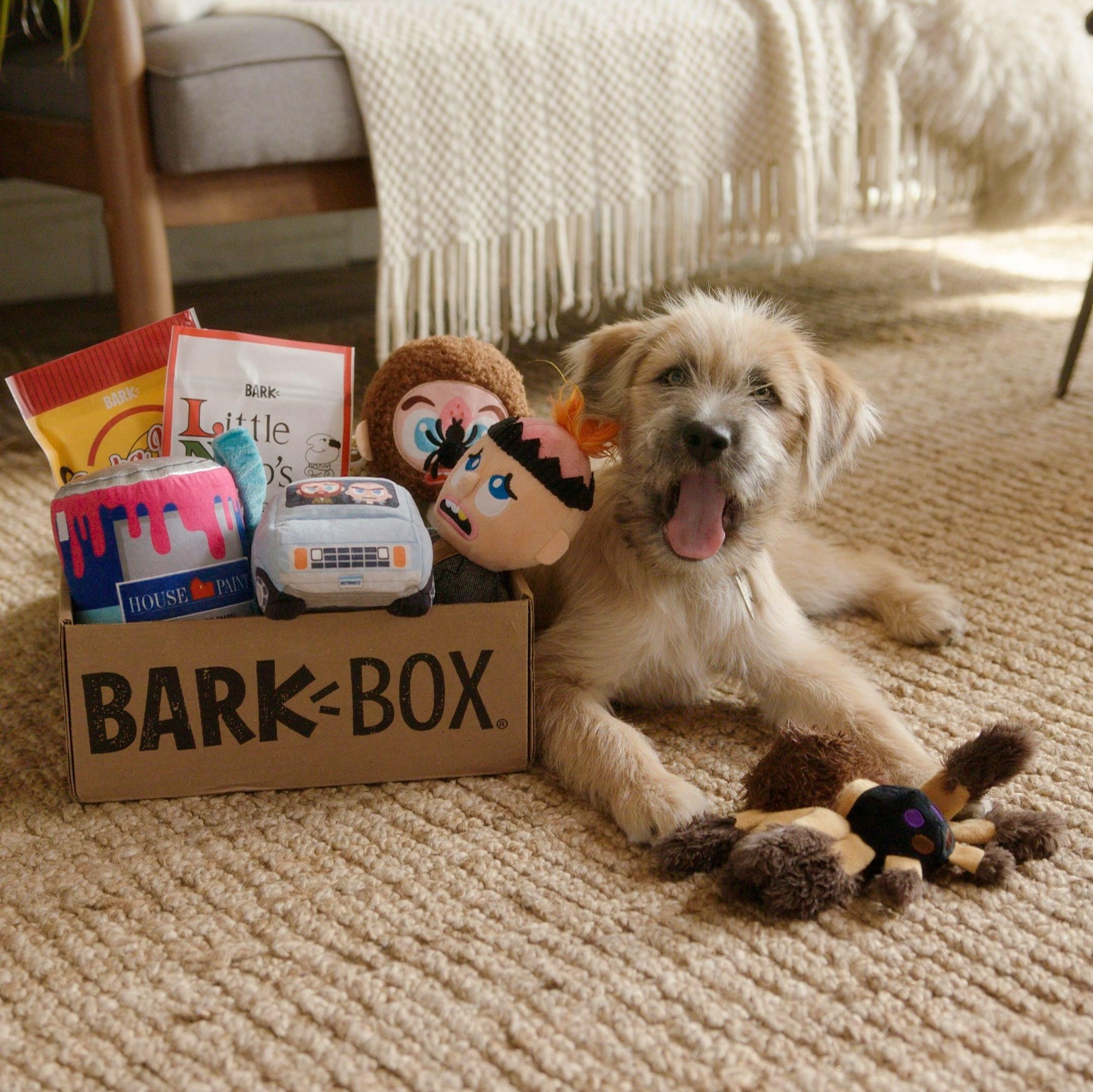 Home Alone Bark Box