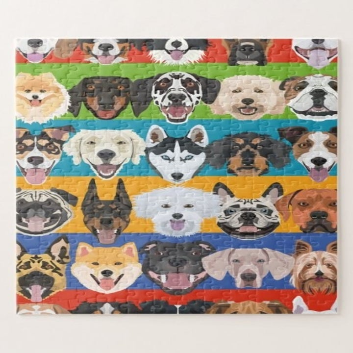 Illustrated puzzle with many different breeds of dogs