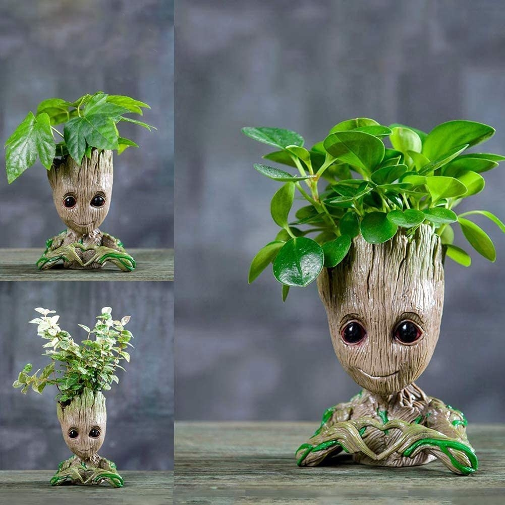 The baby Groot pot shown with three different types of plants