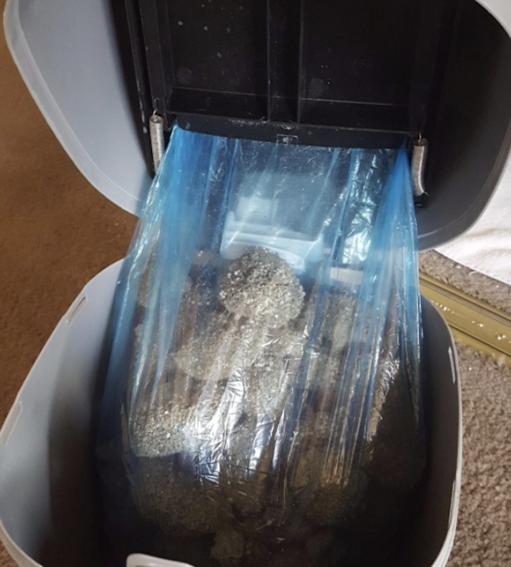 The bags with clumps of litter in it