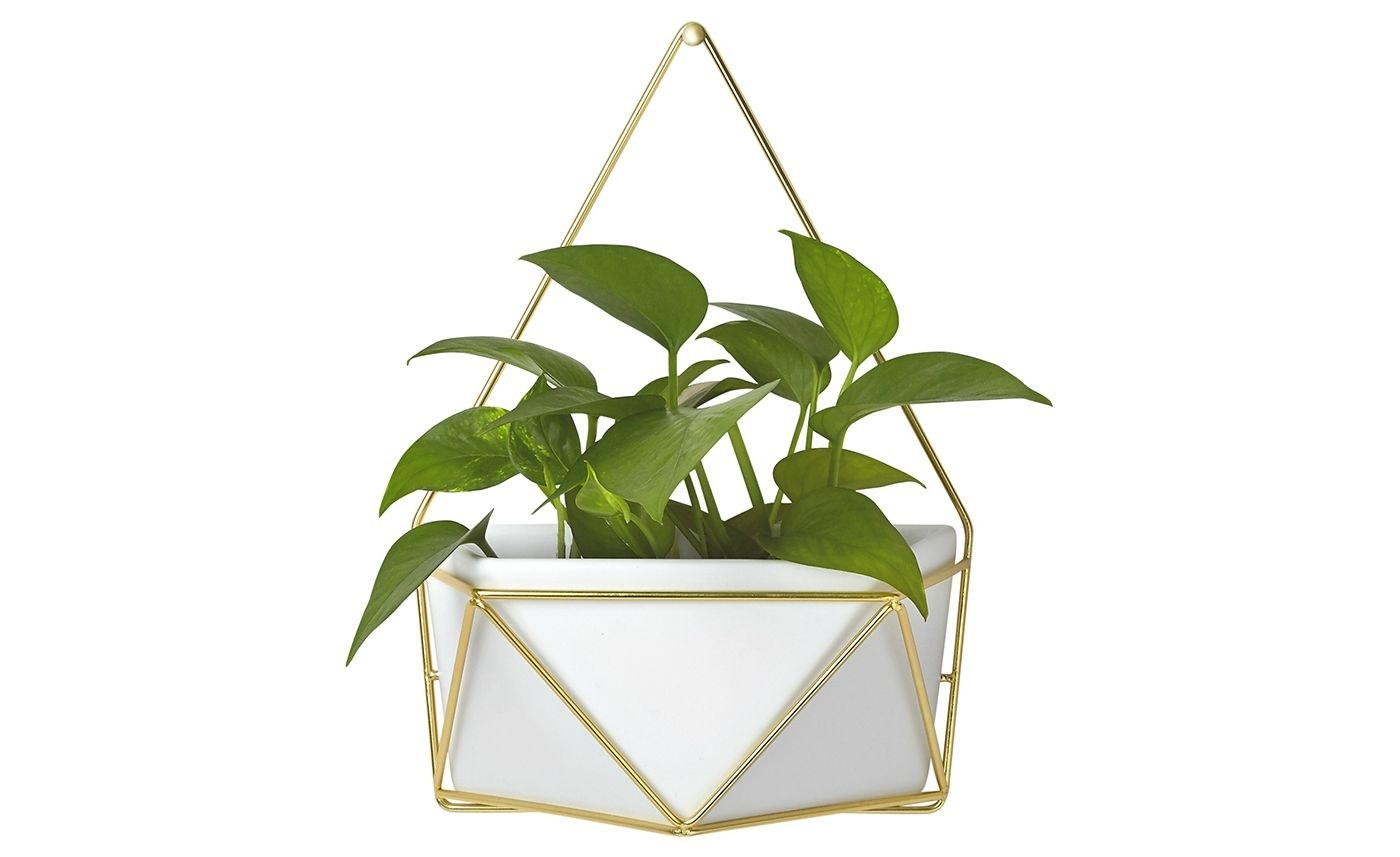 The planter, which is made of white ceramic in an angular, geometric shape, with gold tone wire wrapped around it and providing a handle to hang from the wall