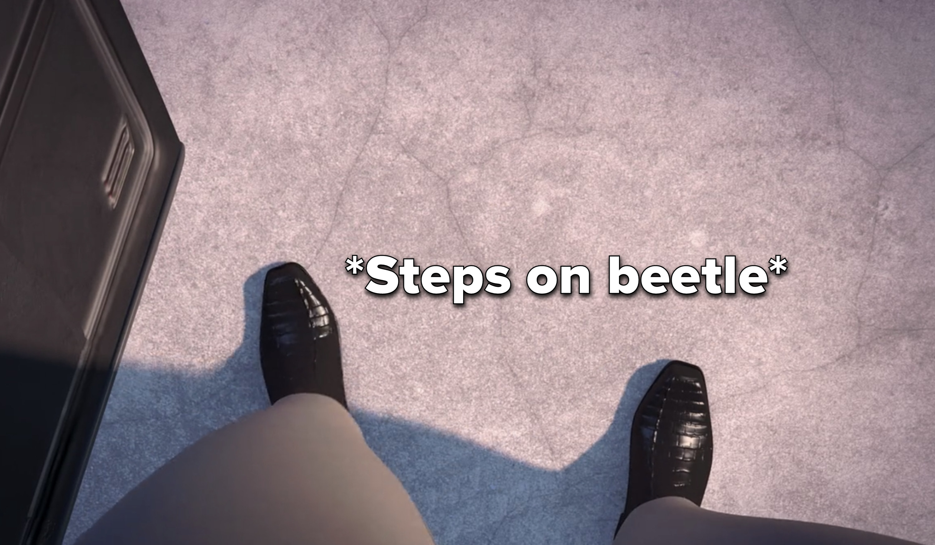 the lawyer steps on a beetle