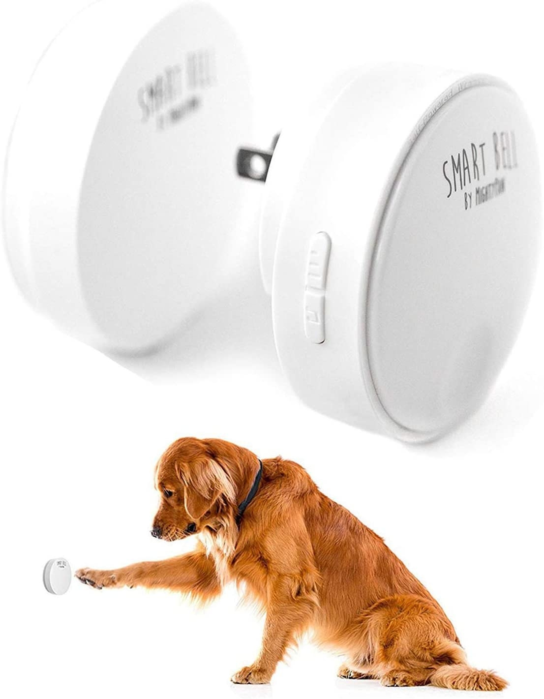 Dog pushingpaw against bell