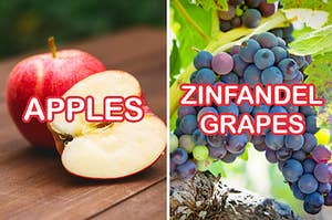 Side-by-side images and labels of apples and Zinfandel grapes
