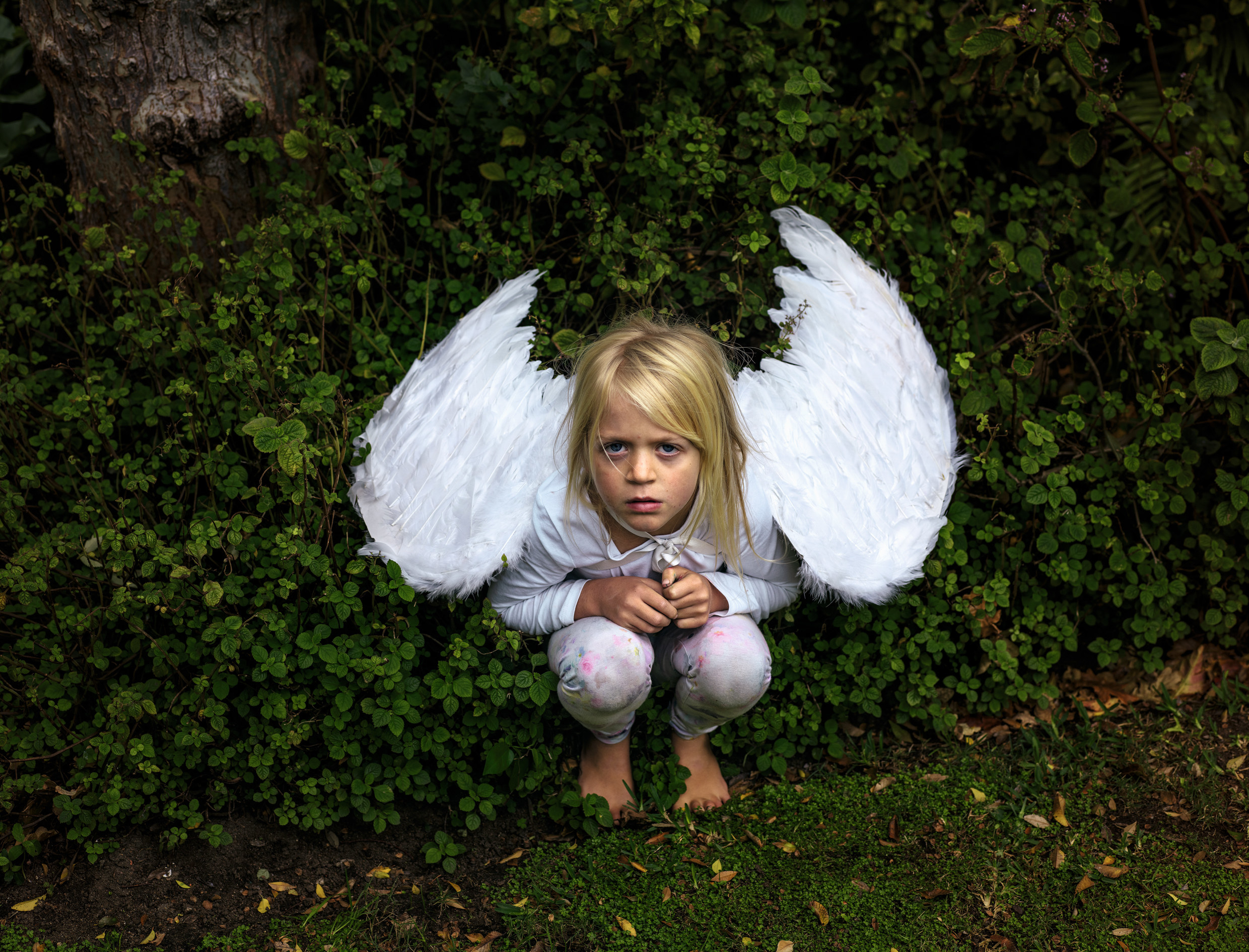 A small child wearing pajamas and angel wings crouching down in from of a hedge
