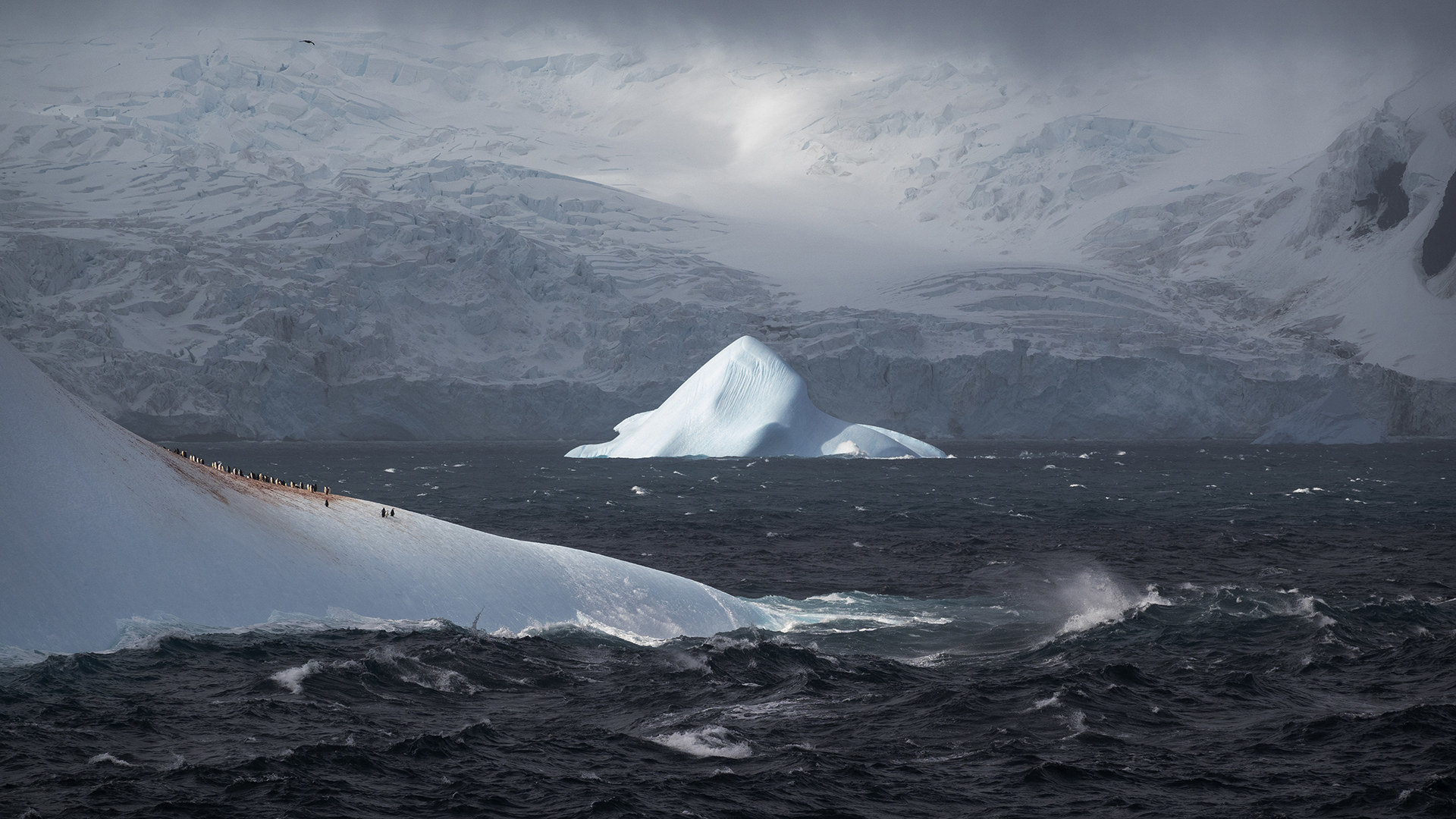 People standing on the side of a glacier, with the ocean roaring.