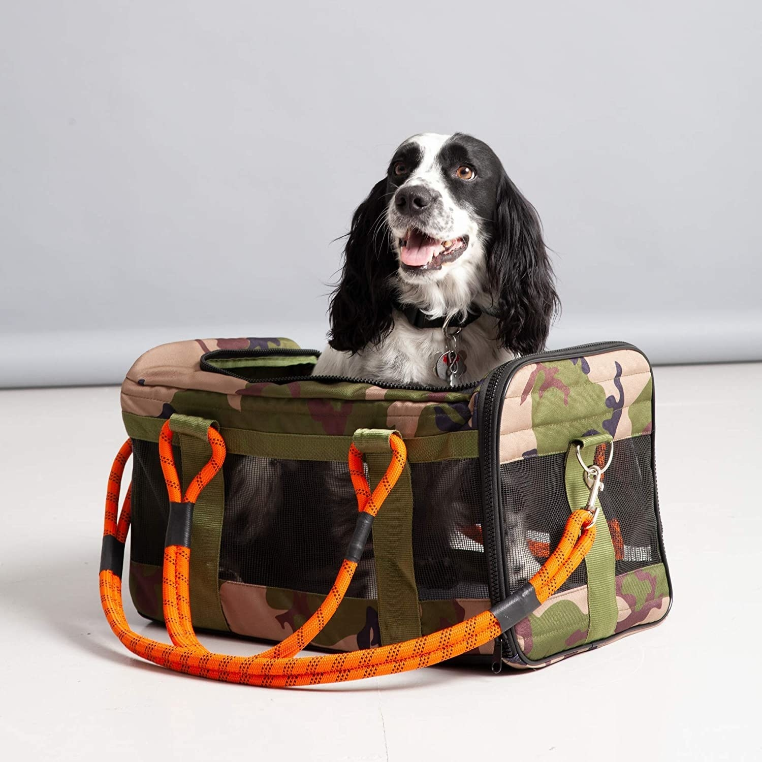 A medium white and black dog sitting in the camo print bag, which has thick neon orange straps