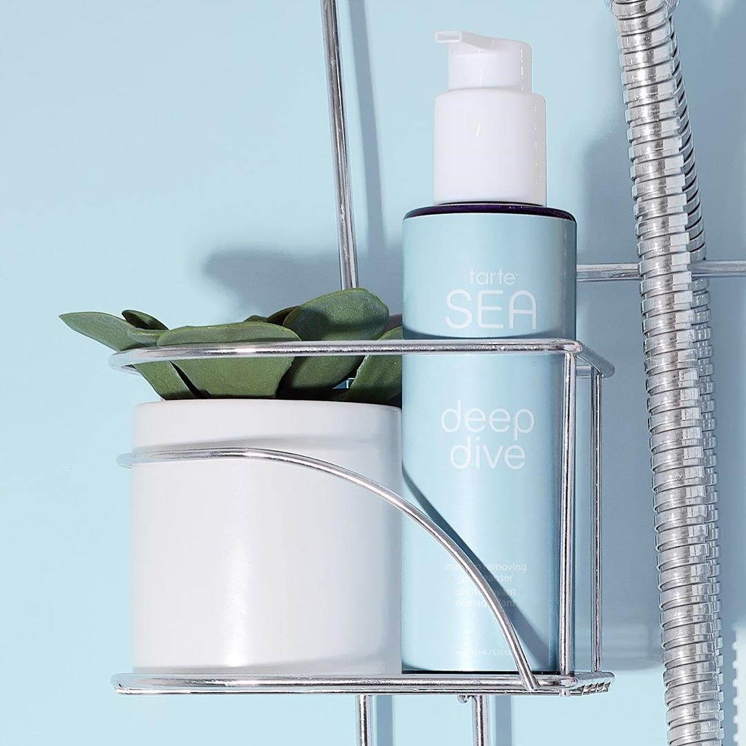 A bottle of the cleanser in a shower caddy next to a succulent