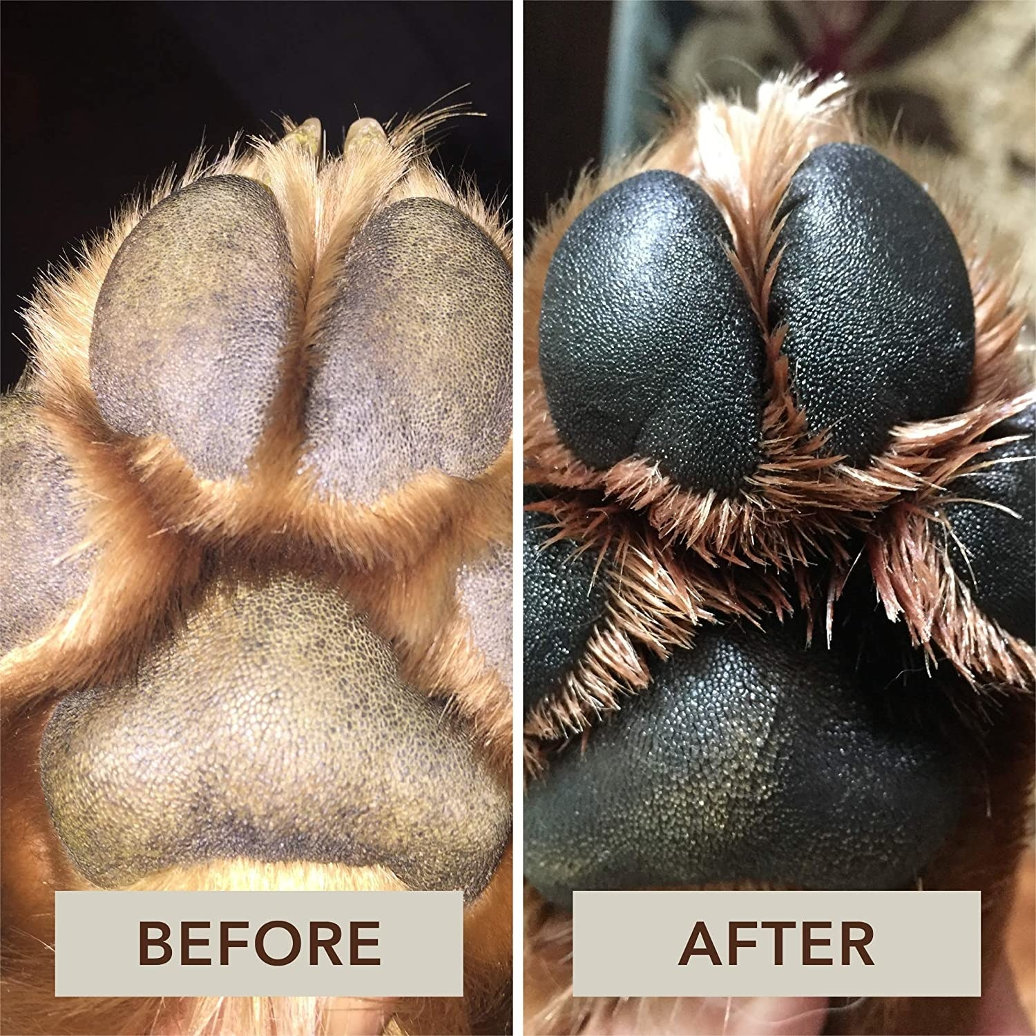 A split photo of a dog's paw before and after using the cream, showing a much darker and healthier paw