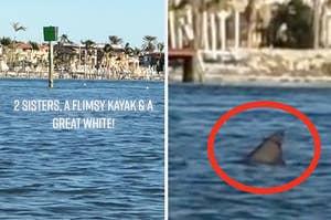 姐妹们划皮艇,看到了一只大白鲨