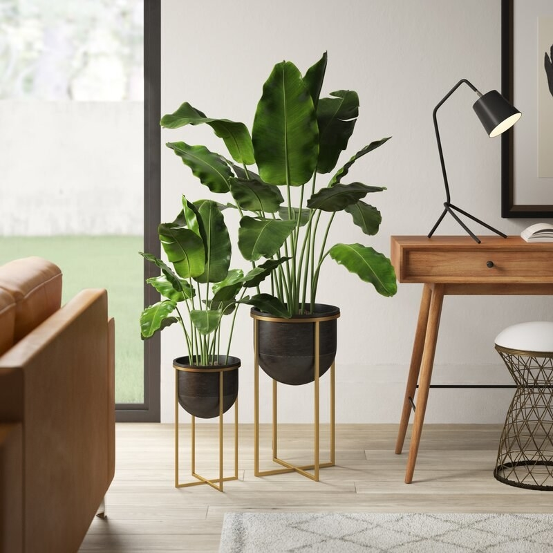 Black and bronze planter set with plants