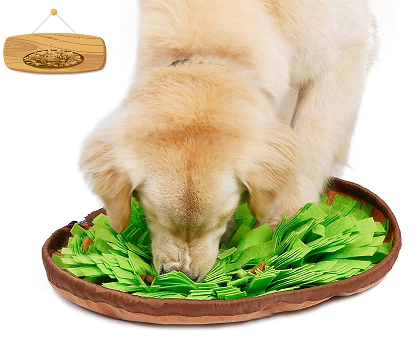 Model dog sniffs out his food in the brown and green snuffle mat