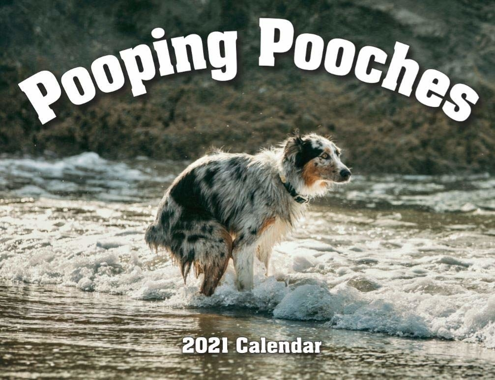 The cover of the Pooping Pooches 2021 calendar