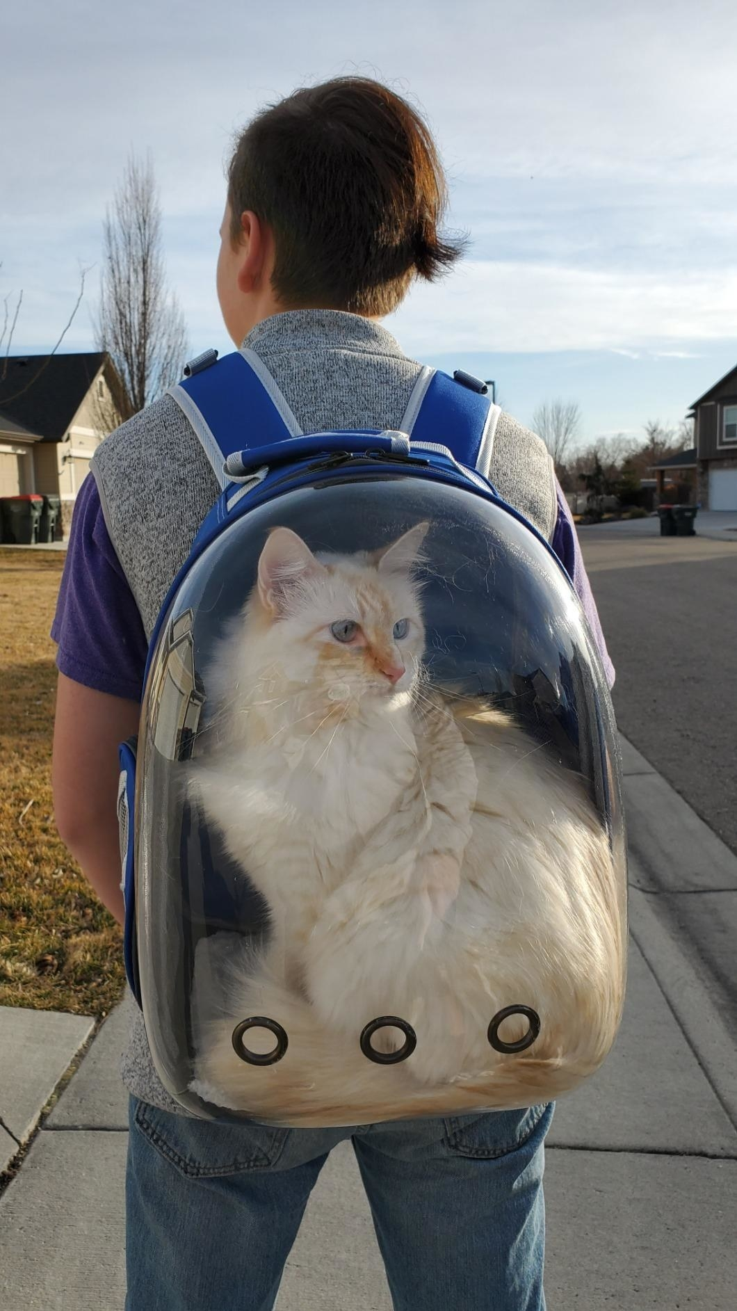 A reviewer carrying a cat on their back using the bubble backpack