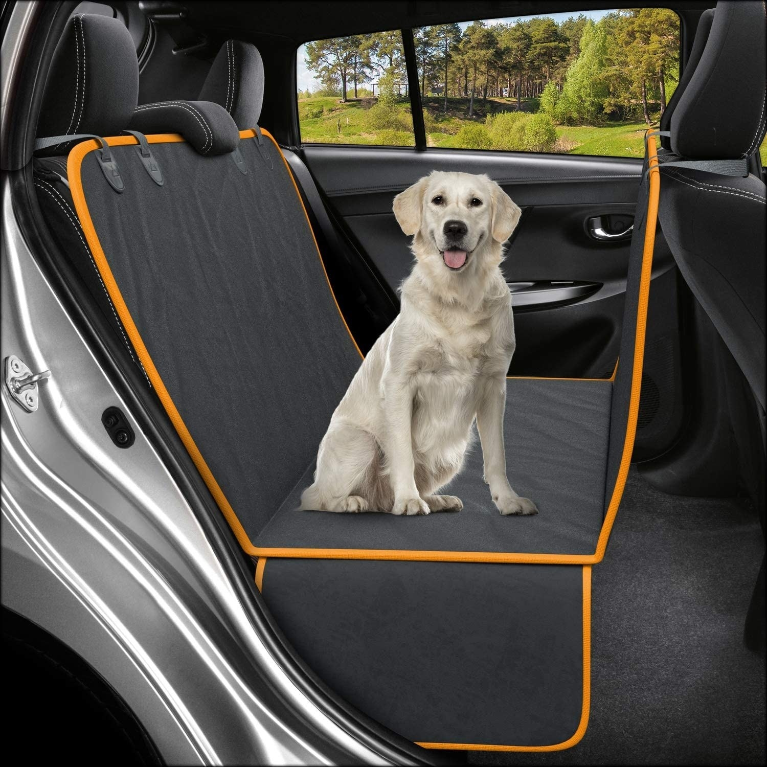 Dog sits on the black and orange seat cover