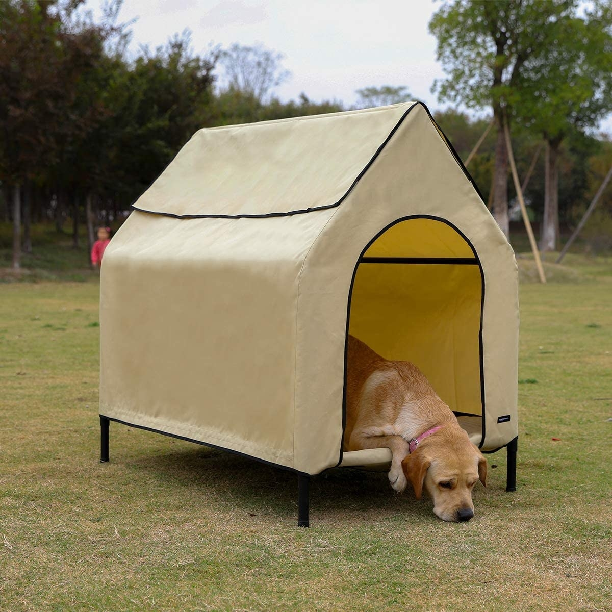 Dog inside the tan and black elevated pet house