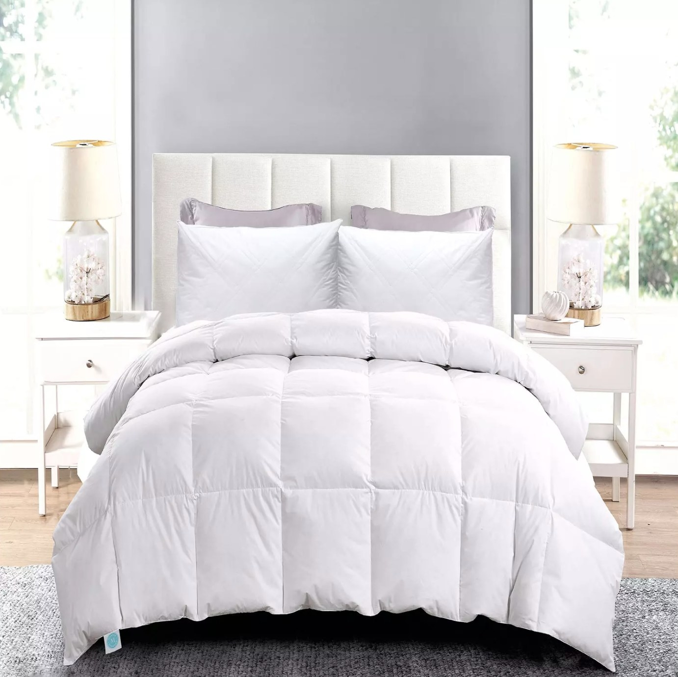 The down comforter and pillow set in twin size