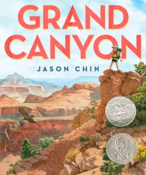 Book cover of illustrated scene at the Grand Canyon with a hiker on a cliff