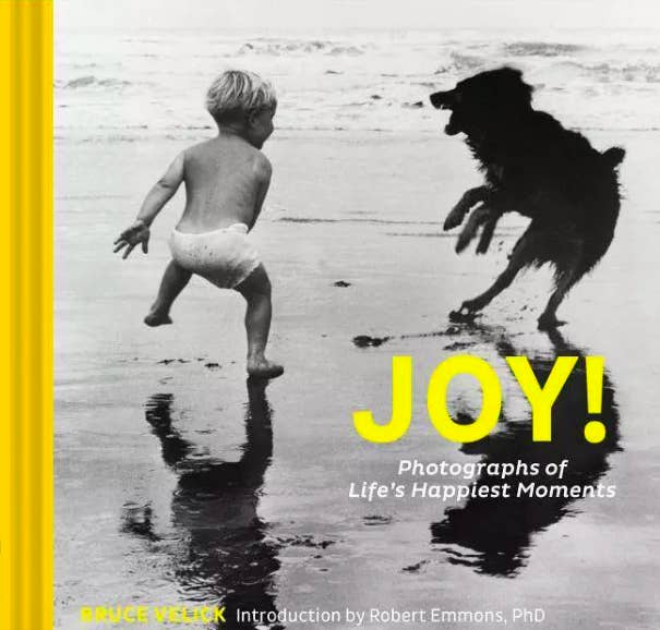 Book cover with little child and dog playing on beach