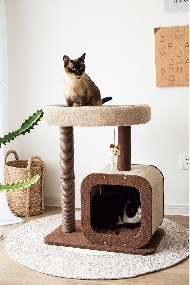 Two cats using both tiers of the cat condo