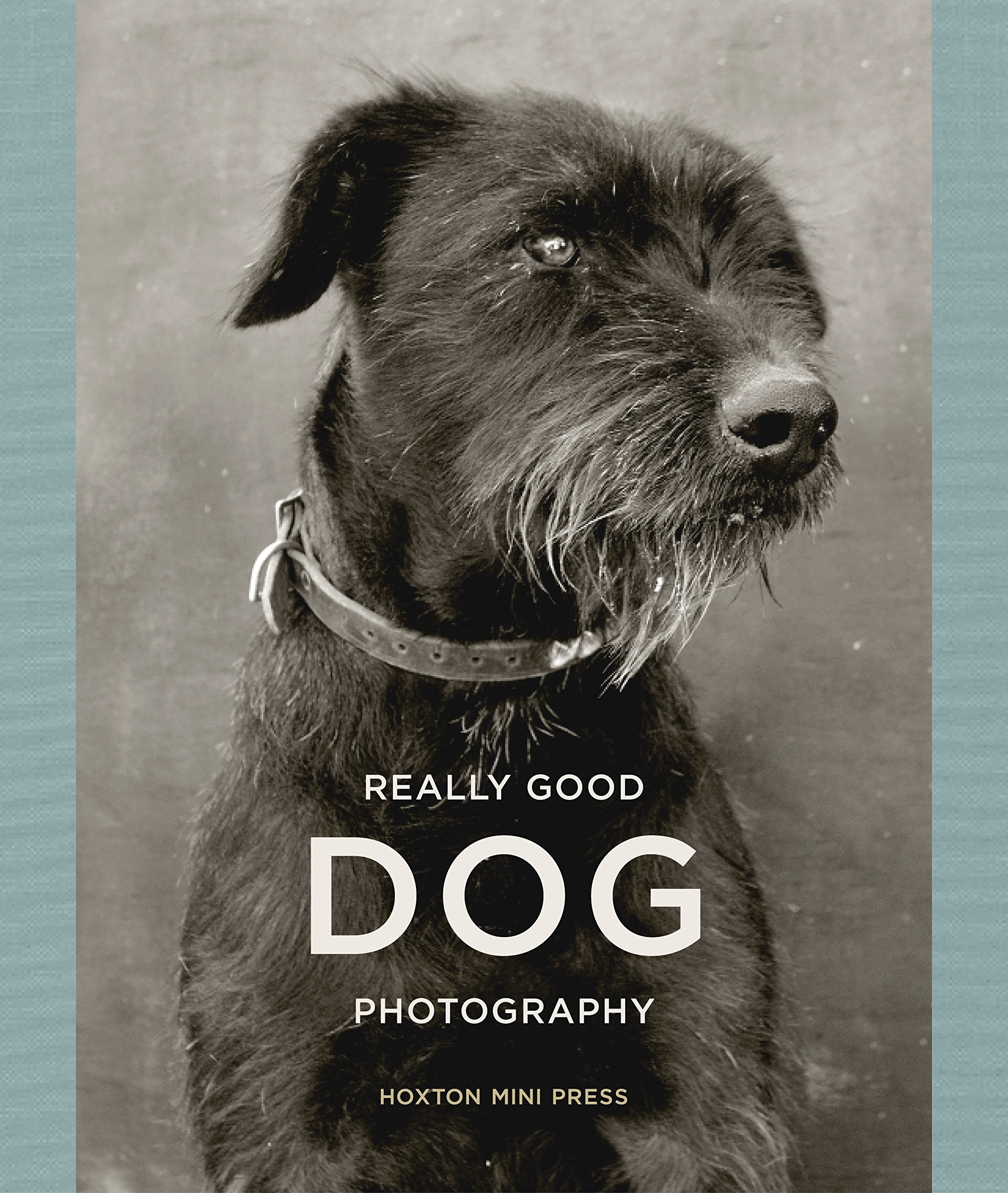 Black and white image of scruffy dog on book cover