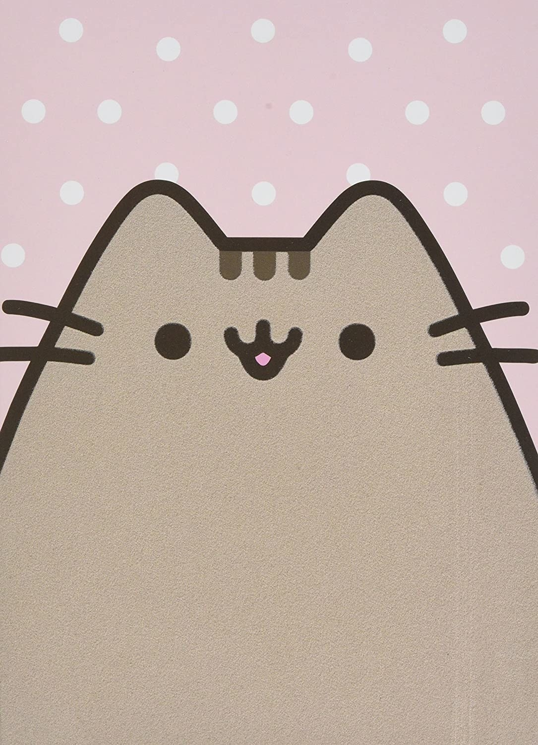 Pusheen cat on the cover of the notebook