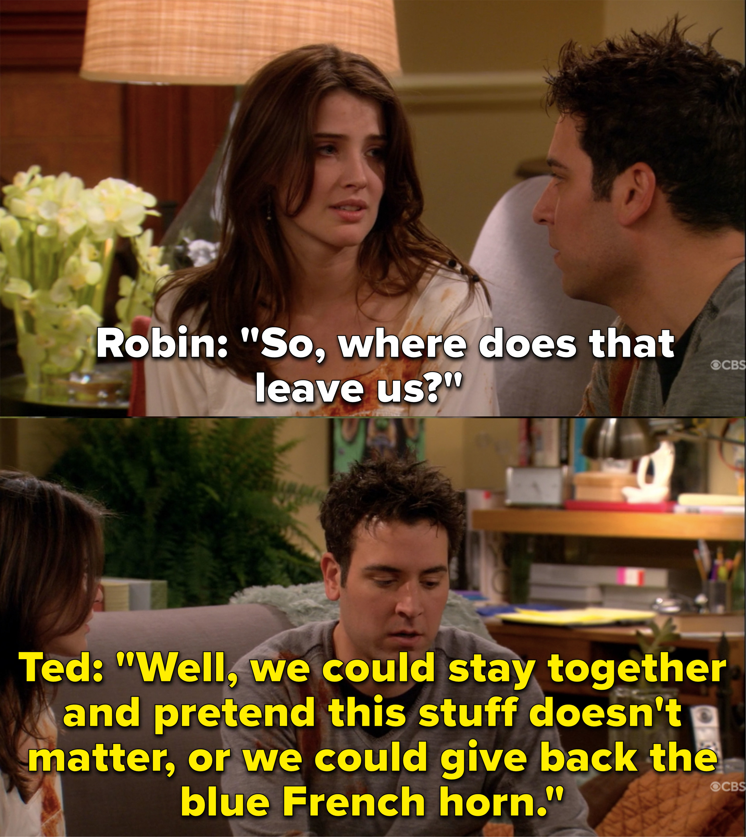 Robin asks where they stand and Ted says they can either stay together and pretend their differences don't matter or give back the blue French horn