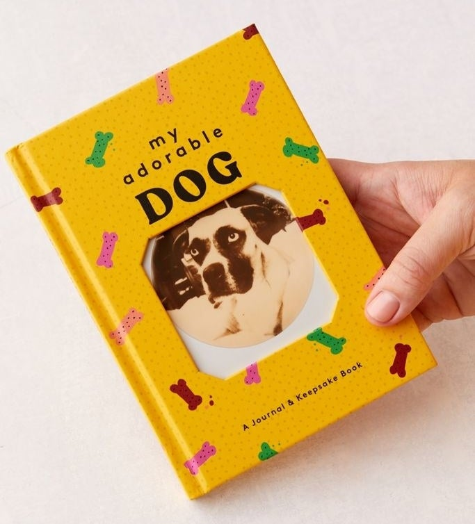 """Hand holding the yellow """"My adorable dog"""" book with illustrated bones on it and a place to put a picture of the dog in at the front"""