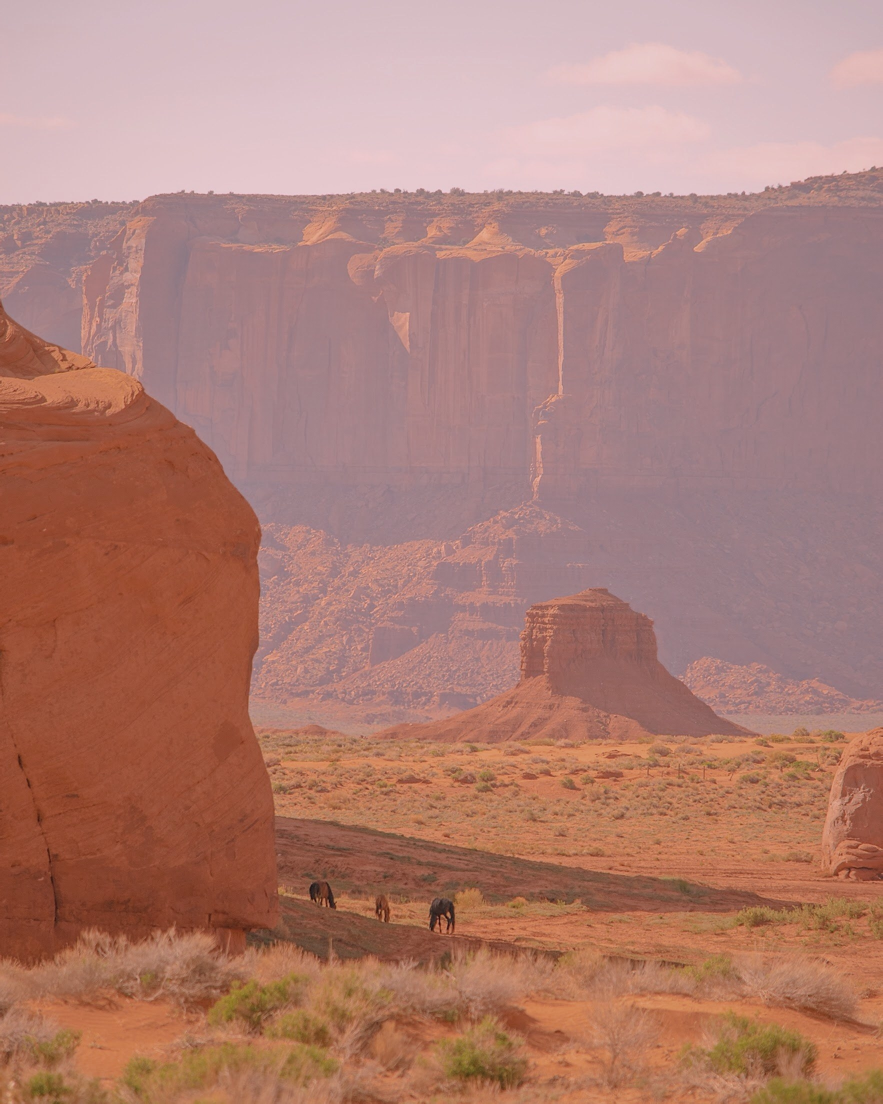 Three horses in a desert with buttes in the distance.