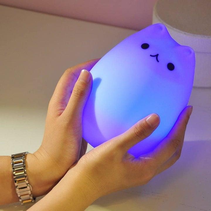 the lamp in purple/blue