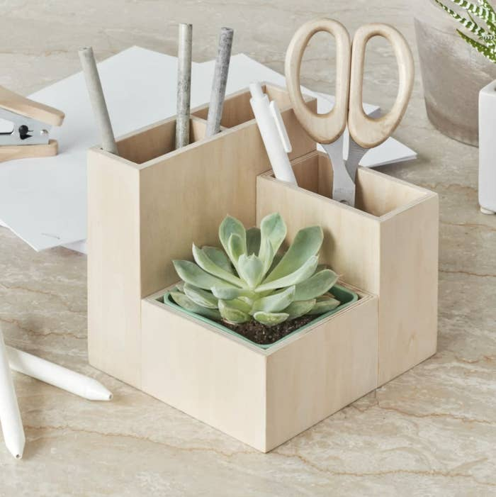 The desktop organizer with succulent