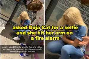 Guy meets Doja Cat, asks for a selfie, and she hits her arm on a fire alarm