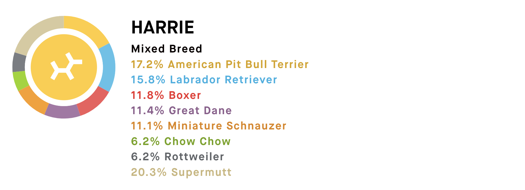DNA results for Harrie. Mixed Breed 17.2% American Pit Bull Terrier 15.8% Labrador Retriever 11.8% Boxer 11.4% Great Dane 11.1% Miniature Schnauzer 6.2% Chow Chow 6.2% Rottweiler 20.3% Supermutt