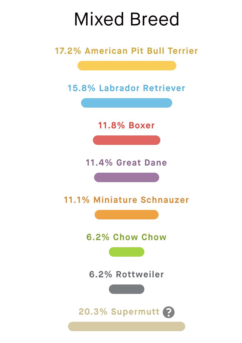 17.2% American Pit Bull Terrier 15.8% Labrador Retriever 11.8% Boxer 11.4% Great Dane 11.1% Miniature Schnauzer 6.2% Chow Chow 6.2% Rottweiler 20.3% Supermutt