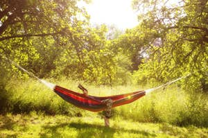 person in a hammock in the woods
