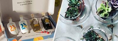 The Brightland mini essentials kit and a terrarium kit