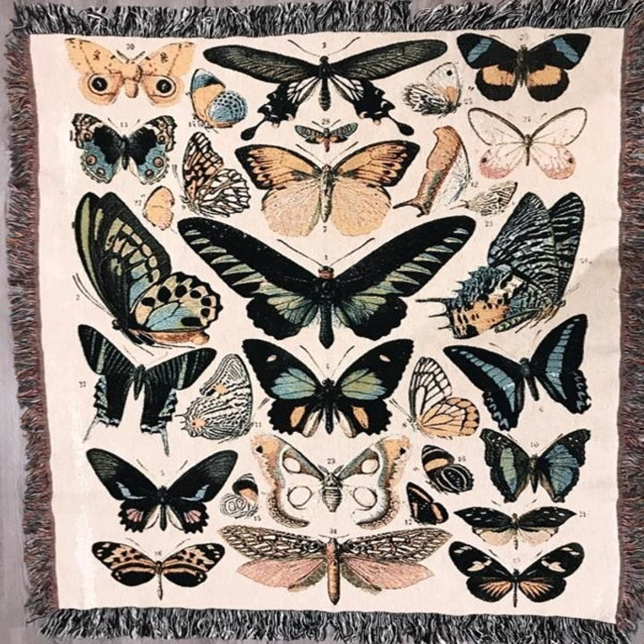 blanket with moth, butterfly pattern