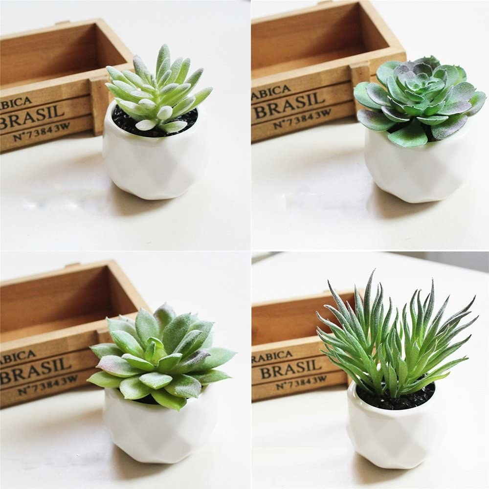 A grid image of four faux succulents in geometric vases