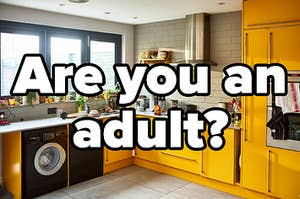 "Image of a kitchen that reads ""are you an adult?"""