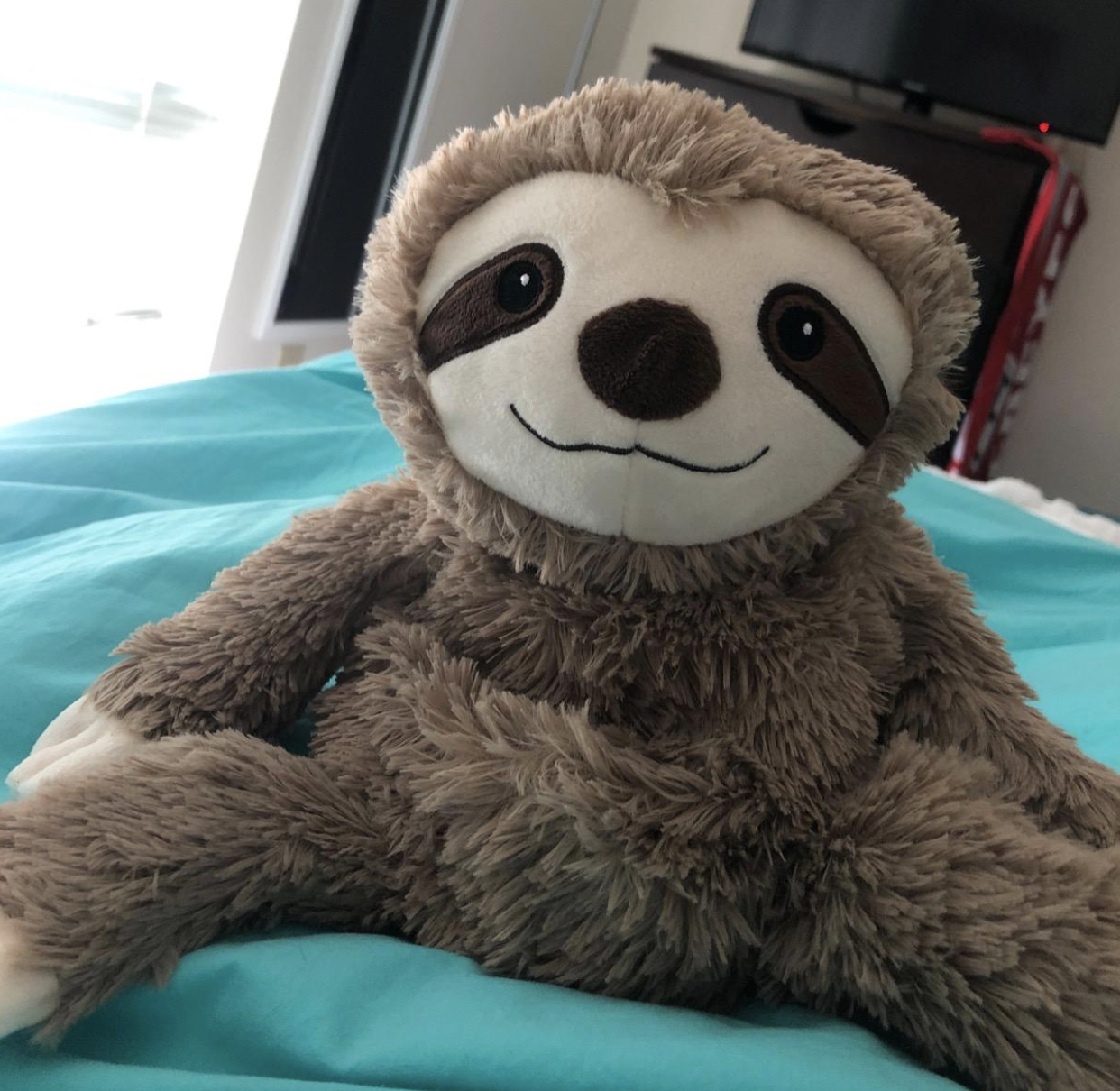 reviewer photo of the sloth plush
