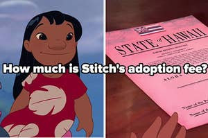 how much is stitch's adoption fee?