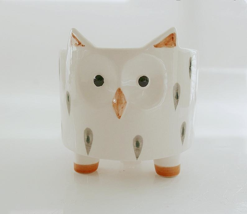 A planter with a cute owl face