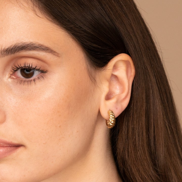 Photo of model wearing earrings