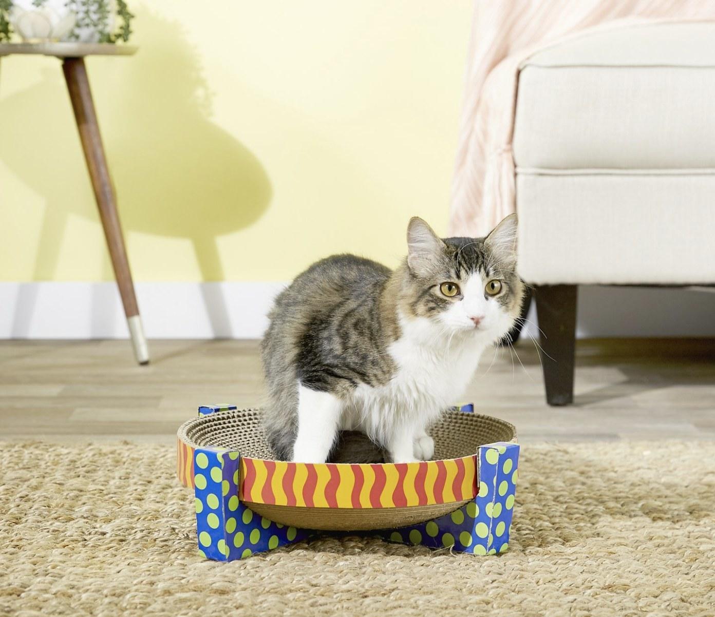 A cat sitting on a cat scratcher shaped like a bowl
