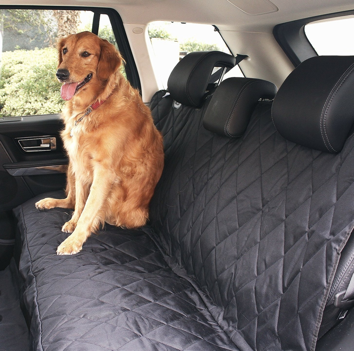 A dog sitting in the backseat of a car with a protective cover on the seats