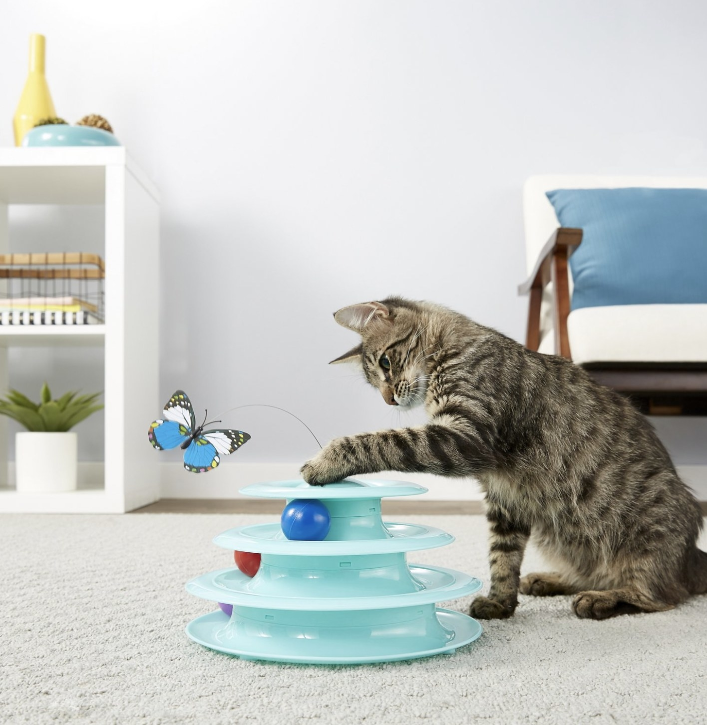 A cat is playing with a butterfly cat toy