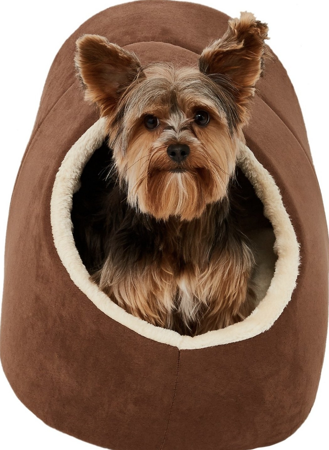 A dog inside a cave bed
